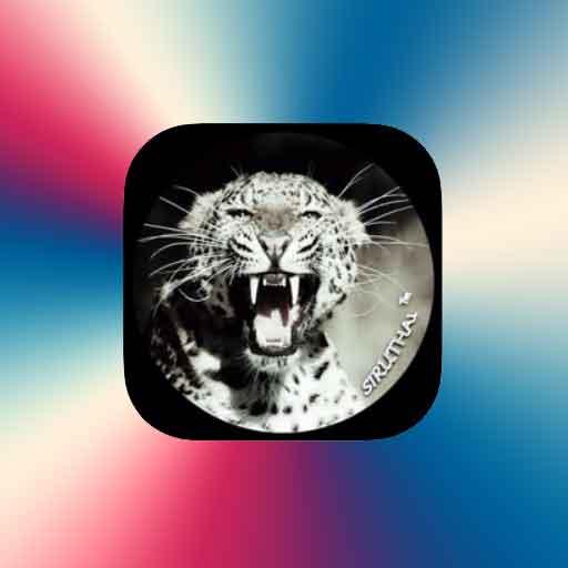 Siruthai FM radio online